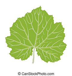 verde, vector, hoja, ilustración, planta