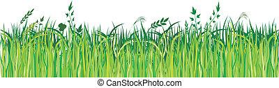 verde, vector, pasto o césped, elemento