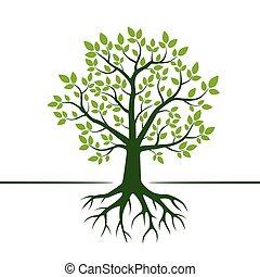 verde, vetorial, árvore, e, roots., vetorial, illustration.