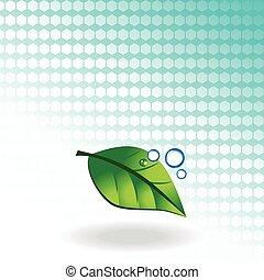 verde, vetorial, folha