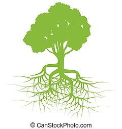 verde, vettore, albero, radici, fondo