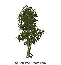 verde, vettore, albero