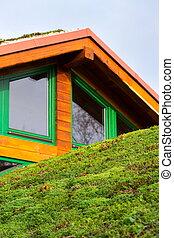verde, vida, césped, techo, con, pasto o césped, en, de madera, edificio