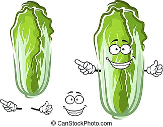 verdura, cavolo, verde, cartone animato, cinese