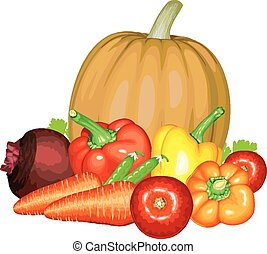 verdura, composizione