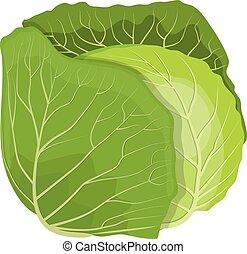 verdura, fresco, cavolo, verde