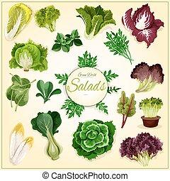 verdura, manifesto, foglia, verdura, insalata