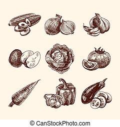 verdura, set, schizzo