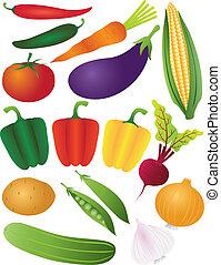 verdura, sfondo bianco, isolato, illustrazione