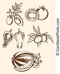 verdura, vendemmia, set, icone