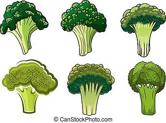 verdura, verde, isolato, maturo, broccolo