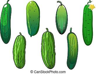 verdure fresche, spinoso, cetriolo, verde