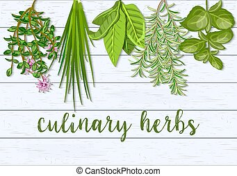 verdure, thym, ferme, ciboulette, bois, scandinave, culinaire, frais, herbs., fond, pendre, romarin, basilic