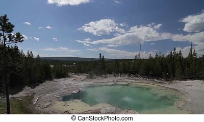 vereint,  national, Staaten,  Park, heiß,  Yellowstone, Mammut, Federn