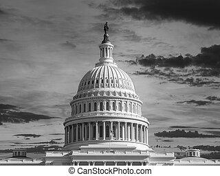 verenigd, capitool koepel, betuigt zwarte, witte
