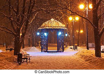 verfraaide, winter, stad park, op de avond