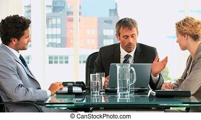 vergadering, zakelijk, drie