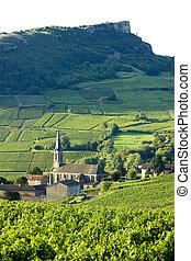 vergisson, borgoña, viñas, francia