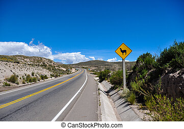 verkehrszeichen, :, uhr, für, lamas!!, bolivien