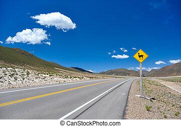 verkehrszeichen, :, uhr, für, vicunas!!, bolivien