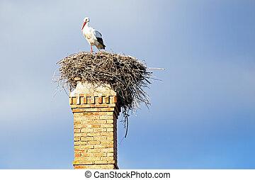verlassen, nest, chimney., fabrik, storch, oberseite