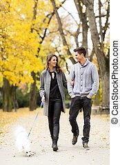 verliefd koppel, in, herfst, park