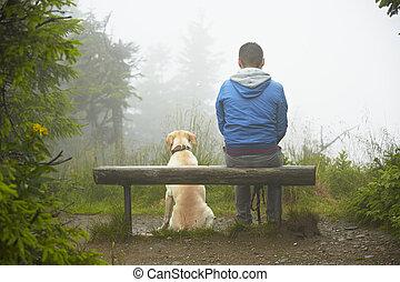 verlorener hund, mann, seine