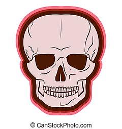 vermelho, skull., vetorial, illustration., desenho, por,...