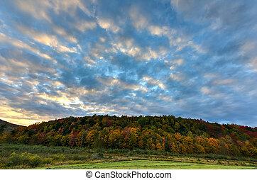 vermont, feuillage, automne