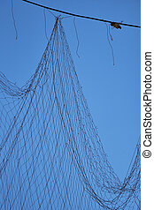 vernetzung, hängender , mit, himmelsgewölbe, in, der, hintergrund