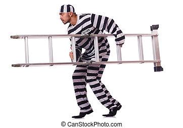 veroordeelde, crimineel, in, gestreepte , uniform