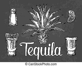 verre, cactus, chaux, sel, tequila, botlle