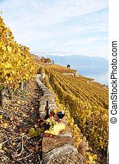 verre vin, région, vignoble, terrasse, bouteille, suisse, lavaux