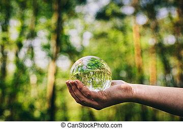 verre, woods., main femme, sphère, tenue