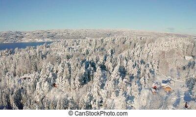 vers, hiver, neigeux, voler, fjord, forêt, au-dessus, froid, épique