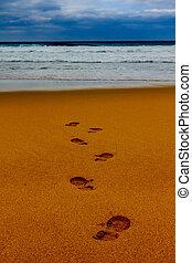 vers, sable, mer, mouillé, ligne, pas