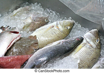 vers seafood