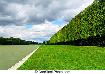 Versailles gardens - Line of sculpted trees along the pond...