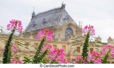 """versailles palace, paris, france, 4k"""