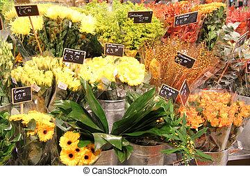 verschieden, blumen, in, a, floristik
