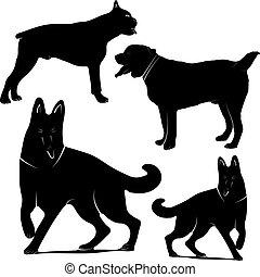 verschieden, hintergrund., silhouetten, vektor, weißes, hunden