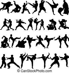 verschieden, positionen, von, jiu jitsu
