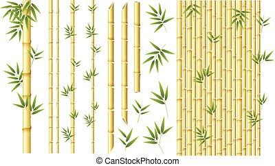 verschieden, satz, bambus