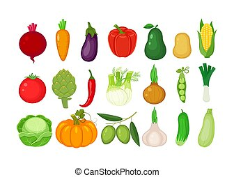 verschieden, satz, vegetables., groß, freigestellt, abbildung, hintergrund., vektor, weißes