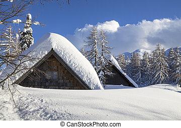 verschneiter , landschaftsbild, bergen