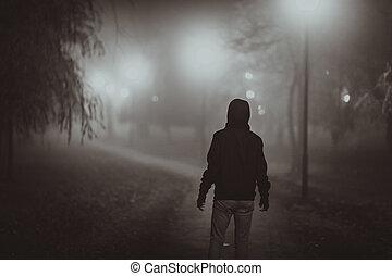 verschrikking, scène, van, een, herfst, fog., verlichting,...