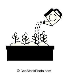 verser, pot, arrosage, eau, boîte, fleurs