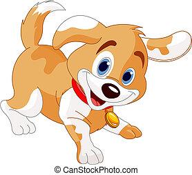 verspielt, junger hund
