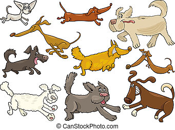 verspielt, rennender , satz, karikatur, hunden