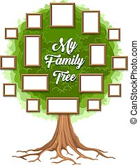 vert, arbre généalogique, cadres, image
